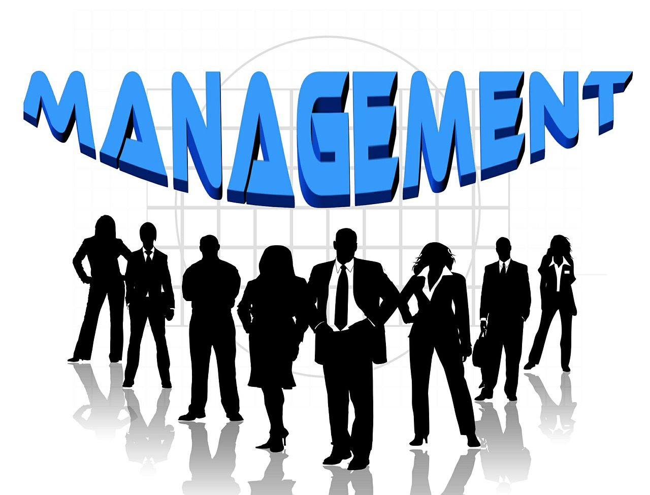 management of team